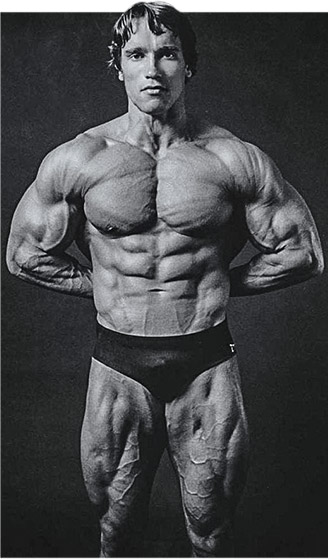 Arnold schwarzenegger a blueprint for coach overview of large then with no rest keep repeating this process reduce your weight lift reduce again lift and continue until youre down to the bar malvernweather Choice Image