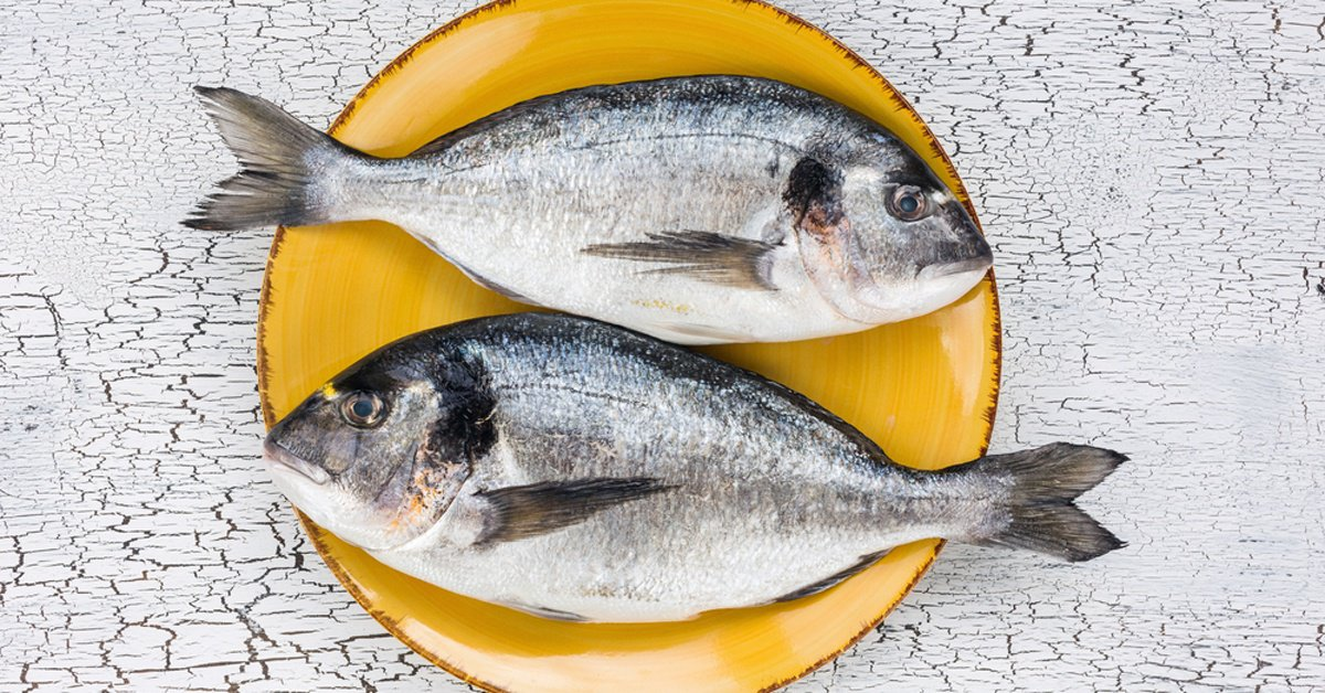 Should You Avoid Fish Because Of The Mercury Banda S